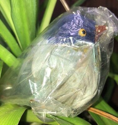 "Vintage ""BLUE"" Bird Beautiful Bird Cage Figurine Tree Ornament Feathers"