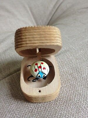 Cute handmade wooden box with bug beetle inside - collectable curiosity souvenir
