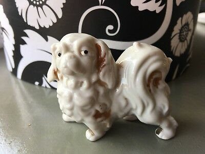 Vintage/Antique Shih Tzu Dog Ceramic/Porcelain