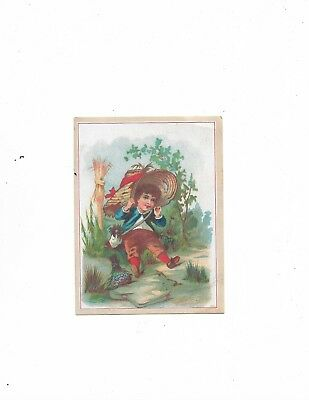 Victorian Trade Card ~ White Swan Soap ~ Flower City Soap Co. ~ Rochester , Ny