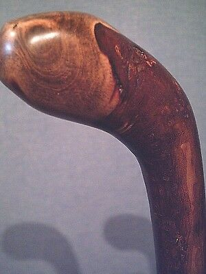 shillelagh cane AMERICAN MADE natures very best for the average size hand user