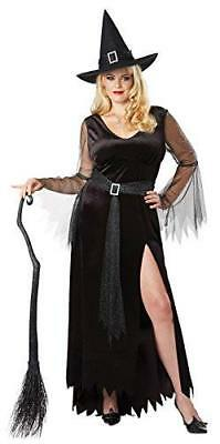 California Costumes Women's Plus Size Rich Witch Adult Woman Costume, Black/Silv