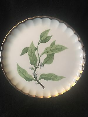 "W.S. George  Bolero Orange Blossom 9-1/4"" Plate"