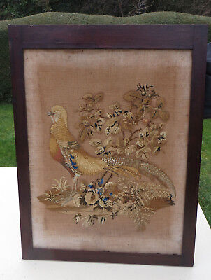Bird/ Golden Pheasant? From Fire Screen- Antique Woolwork Petite Point Interest?