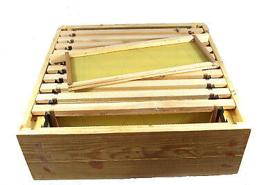 National Bee Hive super box Assembled with 10 frames, foundation castellated