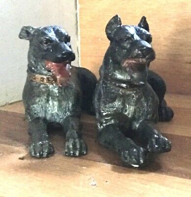 Pair cold panted metal mastiff great dane dog reclining Vienna bronze style 7""