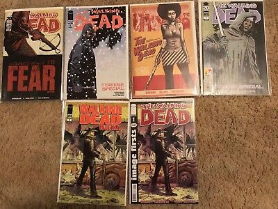 Lot of The Walking Dead Comics  (Michonne, Tyreese special, TWD #101 G.V., more)