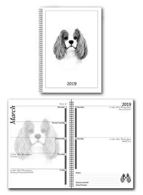 Cavalier King Charles Spaniel 2019 Small Dog Show Diary, Championship Show Dates
