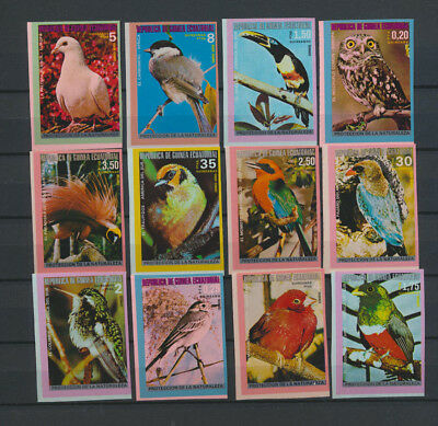 BIRDS Mini Collection 12 Different Mint NH Imperforate Equatorial Guinea Stamps