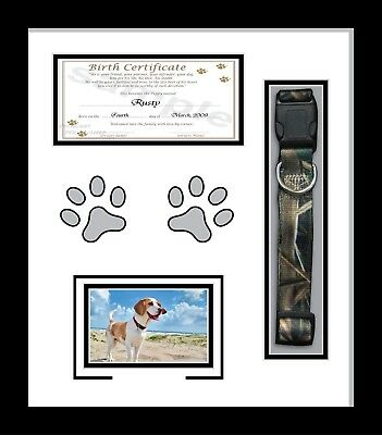 "LOVING MEMORY, PERSONALISED Pet Photo frame 20""x16"" Cat Dog Animals ..."
