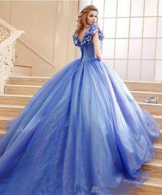 Cinderella Prom Quinceanera Ball Gown Cheap Halloween Evening Dress Party Gowns