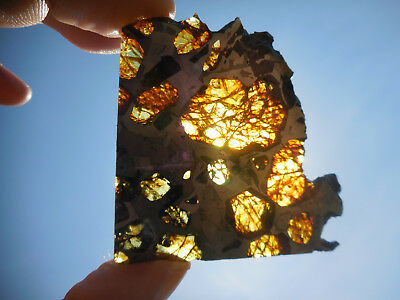 AFFORDABLE / STUNNING 28.5 gram ESQUEL PALLASITE METEORITE, Highly translucent