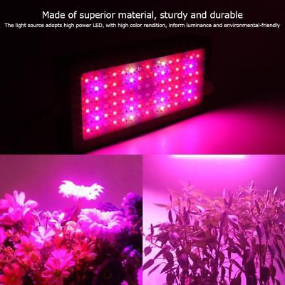900W LED Grow Light Panel Lamp for Hydroponic Plant Growing Full Spectrum