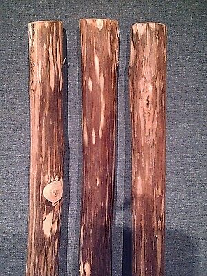1 walking stick staff blank very stiff stout strong You finish it off your way
