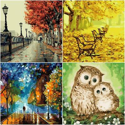 Landscape Street Scene DIY Digital Oil Painting Kit Paint by Numbers Home Decor