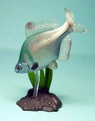 Yujin Freshwater Fish part I Figure collection Rosy bitterling fish US seller
