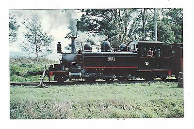 PUFFING BILLY at MENZIES CREEK coloured postcard c1960/70s