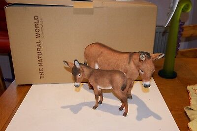 Country Artists Natural World Large Donkey And Foal Tender 03427 Boxed