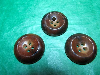 """(3) 1"""" Brown Vegetable Ivory 4-Hole Buttons Vintage Lot (S648)"""