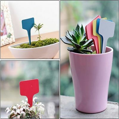 30X Plant Marker T-type Nursery Seed Garden Labels Flexible Plastic Name Tags EU