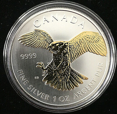 Kanada 5 Dollar 2014 1 OZ Feinsilber 999/- vergoldet Wanderfalke Birds Of Prey