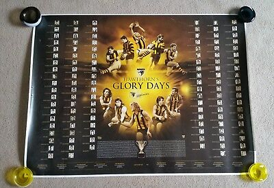 Hawthorn Hawks Glory Days Celebrating 5 Decades of Flags Poster