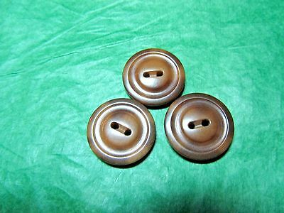 """(3) 13/16"""" Brown Vegetable Ivory 2-Hole Craft Buttons Lot (T7)"""