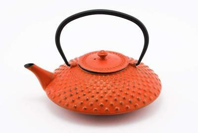 Red Dotted Hobnail Japanese Tetsubin Cast Iron Teapot with Stainless Steel Infus