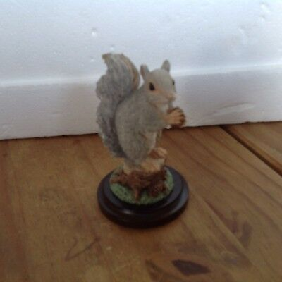 Country artists Grey Squirrel