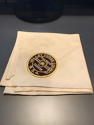 Boy Scout Neckerchief - Valley Forge Council Railroad Course