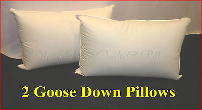 Goose Down Standard Pillows  95% Goose Down & Feathers Hotel Quality Autumn Sale
