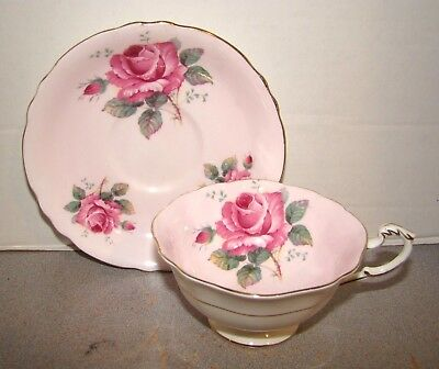 Paragon Cup & Saucer Large Pink Roses On Pink