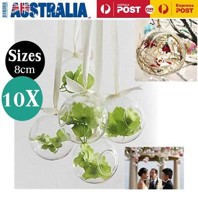 10 X Glass Hanging Plant Terrarium Flower Vase DIY Wall Ball Container 8cm XRP