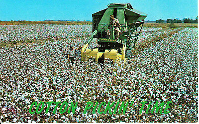 John Deere Cotton Picker 1950s or 1960s Cotton Pickin' Time