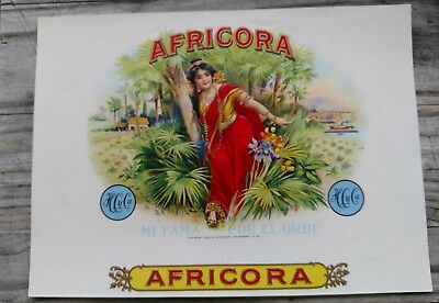 AFRICORA inner CIGAR BOX  LABEL- AMERICAN LITHOGRAPHIC CO AFRICAN JUNGLE 1905