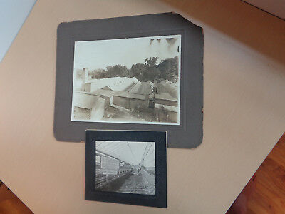 2 Cabinet Photos of Greenhouses in Peoria Ill