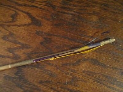 Antique Lakota Sioux Arrow with Sinew Fletchings, Paint
