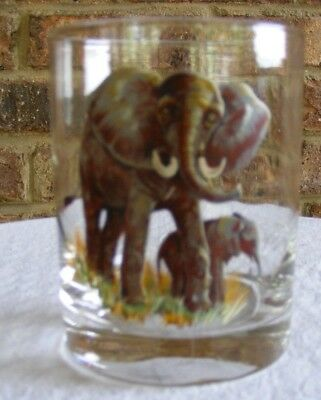 Colorful Set of 6 Wild Animal Double Old Fashioned Glasses
