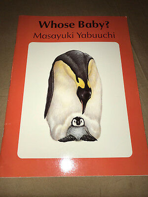Whose Baby by Masayuki Yabuuchi Paperback Kids Book Science And Nature Animals