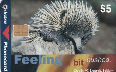 Telstra $5 Achidna Chip On Front Cardex Brussells 1997  314 Only Mint  H67