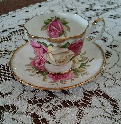 Queen Anne Lady Sylvia White Background Teacup And Saucer