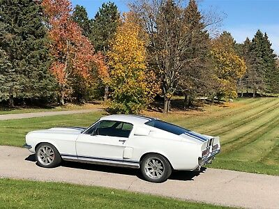 1967 Ford Mustang FASTBACK 1967 MUSTANG FASTBACK SUPERSNAKE TRIBUTE 427