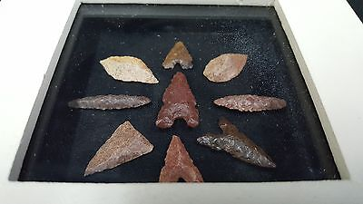 Set of 9 Neolithic Bird Points Arrowheads Matted With Glass Front & Box Framed