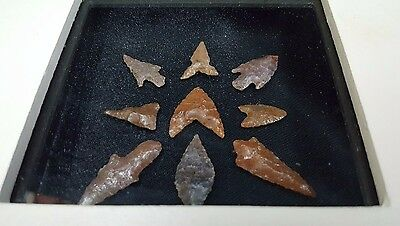 Set of 9 Neolithic Sickle Blade Stemmed Flint Arrowheads With Glass & Box Framed