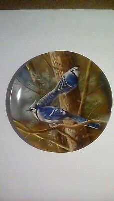 """""""the Blue Jay"""" By Kevin Daniel Encyclopedia Britannica Collectors Plate #3816N"""