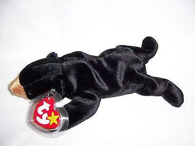 TY Beanie Baby Babies BLACKIE Bear 1993 MINT Private Collection