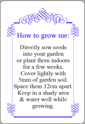 Personalised Forget Me Not Seeds Instructions Stickers In Loving Memory Labels