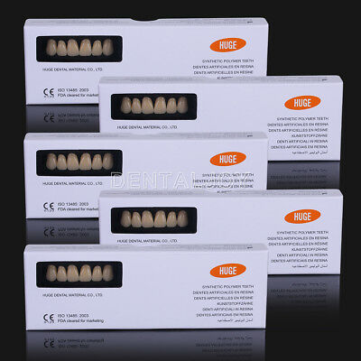 5 Packs Dental Synthetic Polymer Resin Denture Teeth A3 Shade T8/L8/34 28pc/pack