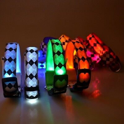 LED Pet Dog Personalised Collar Nylon Light-up Flashing Glow Night Safety Collar