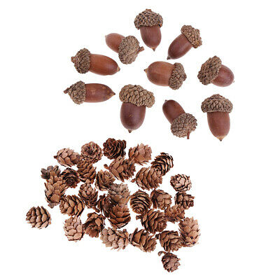 40Pcs Acorns Pine Cones Dried Ornament DIY Dried Floral Crafts for Christmas